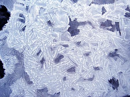 f:id:nijinotsumiki:20101125085153j:image