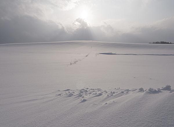f:id:nijinotsumiki:20101224141632j:image