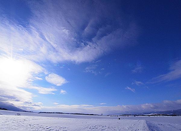 f:id:nijinotsumiki:20110112144133j:image