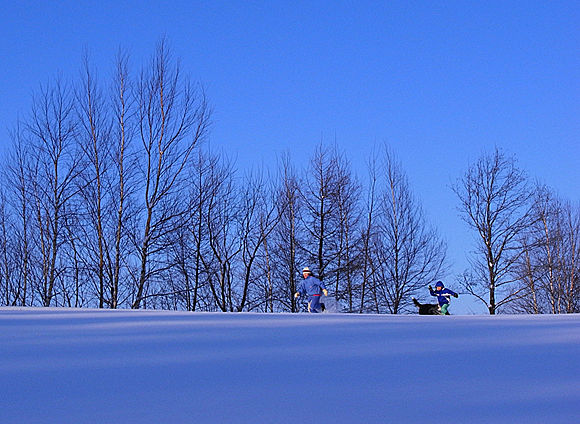 f:id:nijinotsumiki:20110119173618j:image