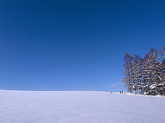 f:id:nijinotsumiki:20110119221614j:image