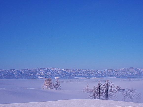 f:id:nijinotsumiki:20110212204519j:image