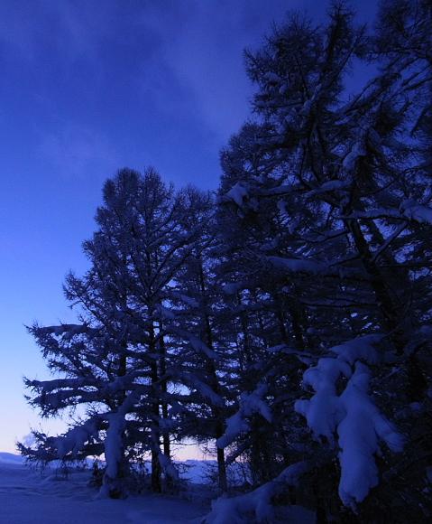f:id:nijinotsumiki:20110213211439j:image