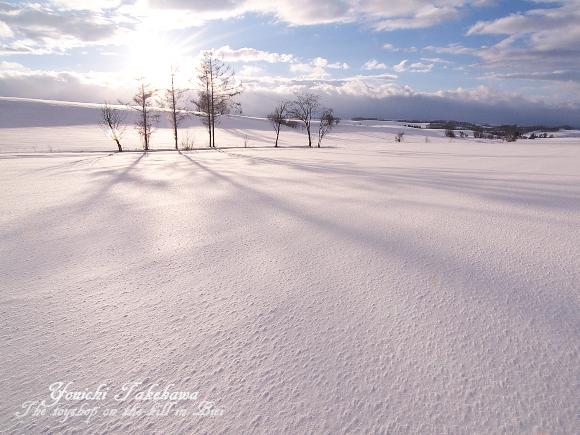 f:id:nijinotsumiki:20110304084658j:image