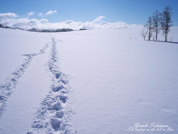 f:id:nijinotsumiki:20110310173725j:image