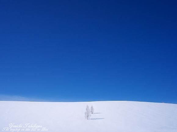 f:id:nijinotsumiki:20110317174052j:image