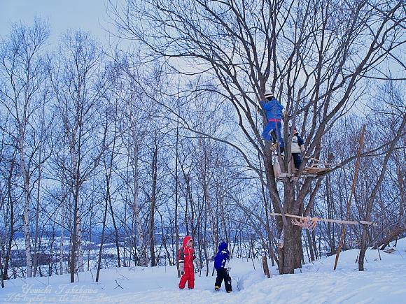 f:id:nijinotsumiki:20110321165418j:image