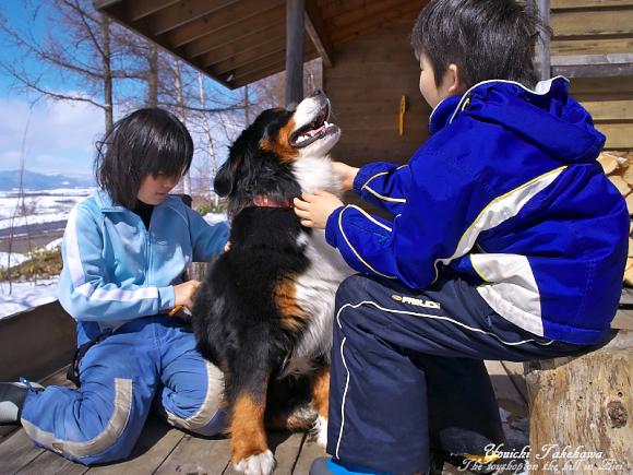 f:id:nijinotsumiki:20110405204239j:image