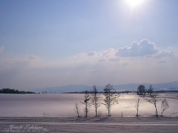 f:id:nijinotsumiki:20110407180740j:image