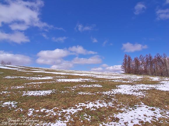 f:id:nijinotsumiki:20110420074930j:image