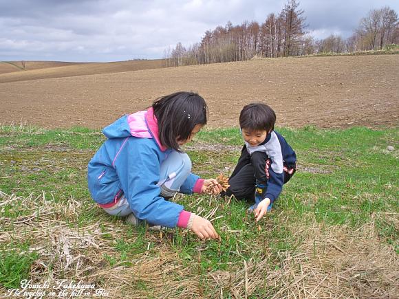 f:id:nijinotsumiki:20110505162713j:image