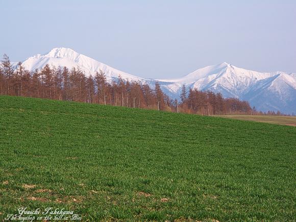 f:id:nijinotsumiki:20110509230501j:image