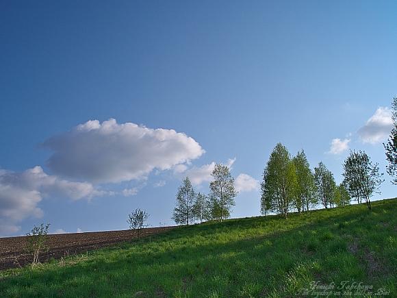 f:id:nijinotsumiki:20110527093733j:image