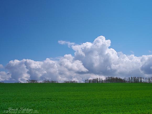 f:id:nijinotsumiki:20110528071636j:image