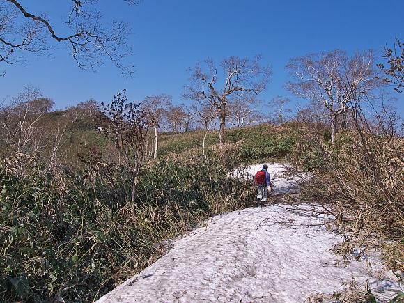 f:id:nijinotsumiki:20110531223940j:image