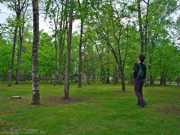 f:id:nijinotsumiki:20110605224116j:image