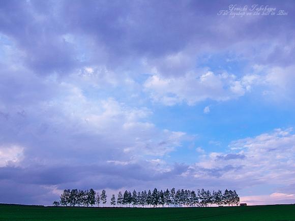 f:id:nijinotsumiki:20110612200450j:image