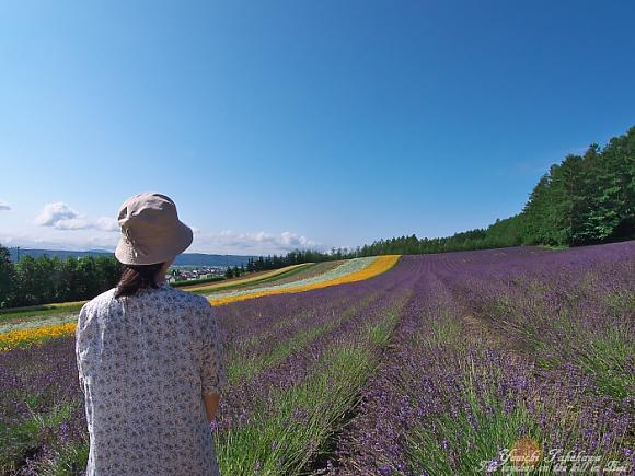 f:id:nijinotsumiki:20110801195150j:image
