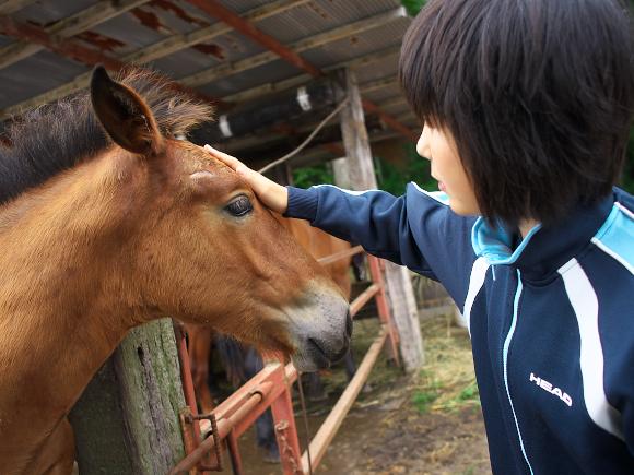 f:id:nijinotsumiki:20110811233658j:image
