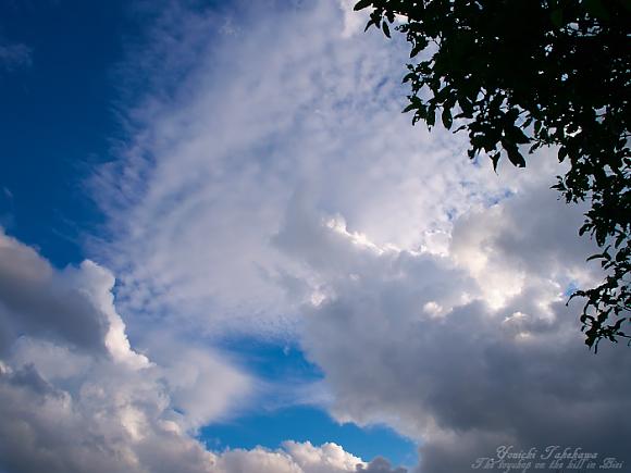 f:id:nijinotsumiki:20110831081201j:image