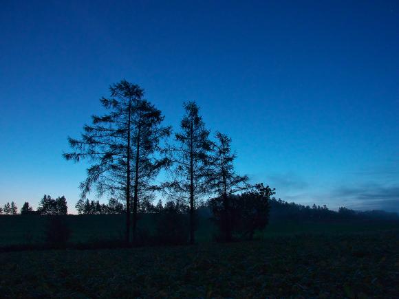 f:id:nijinotsumiki:20110913133525j:image