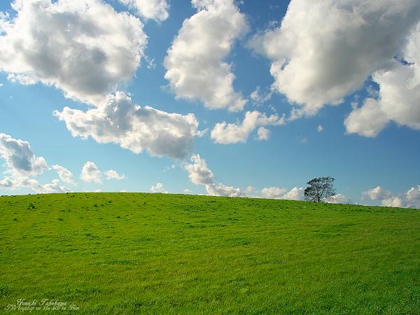 f:id:nijinotsumiki:20110926210446j:image