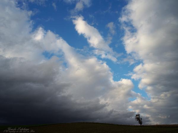 f:id:nijinotsumiki:20111025173724j:image
