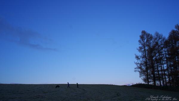 f:id:nijinotsumiki:20111111081112j:image