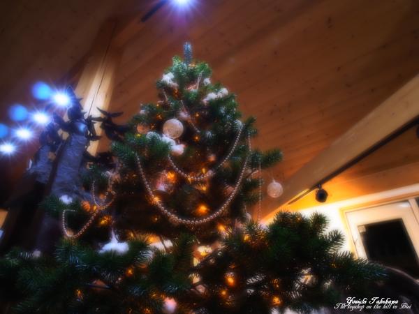 f:id:nijinotsumiki:20111112174727j:image