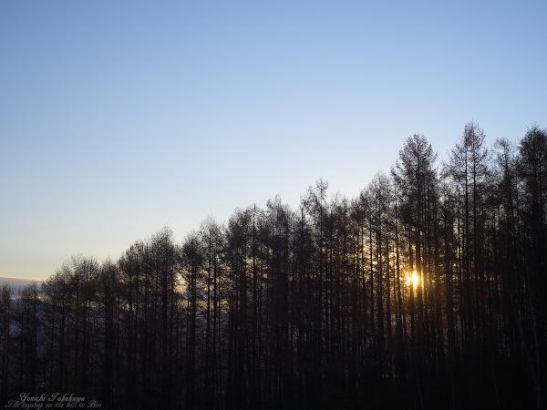 f:id:nijinotsumiki:20111112174729j:image