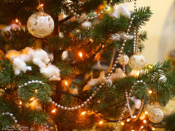 f:id:nijinotsumiki:20111112211801j:image