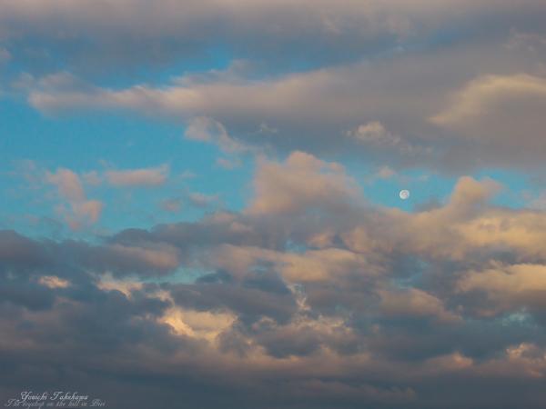 f:id:nijinotsumiki:20111113223300j:image