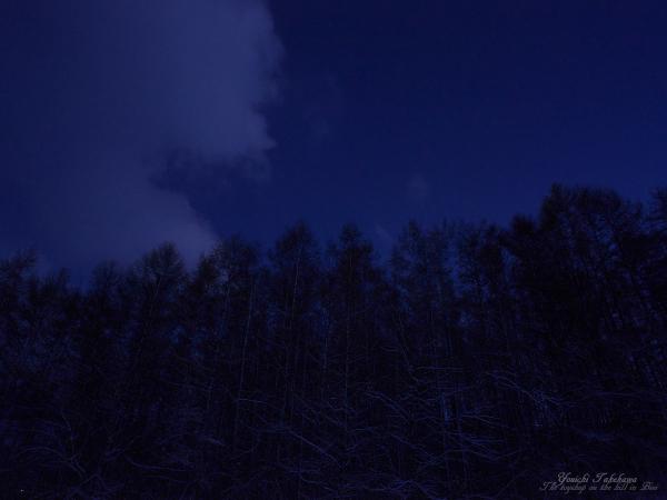 f:id:nijinotsumiki:20111116153647j:image
