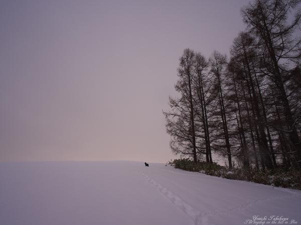 f:id:nijinotsumiki:20111126211912j:image