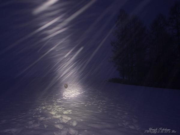 f:id:nijinotsumiki:20111201094954j:image