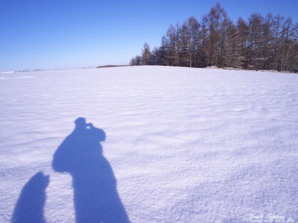 f:id:nijinotsumiki:20111202112502j:image
