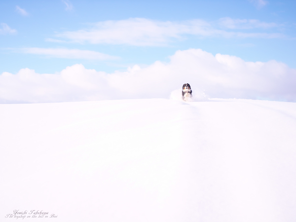 f:id:nijinotsumiki:20111217170230j:image