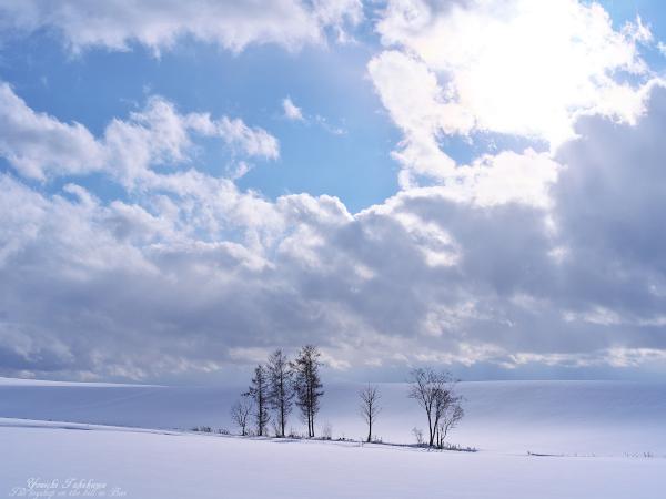 f:id:nijinotsumiki:20111218214145j:image