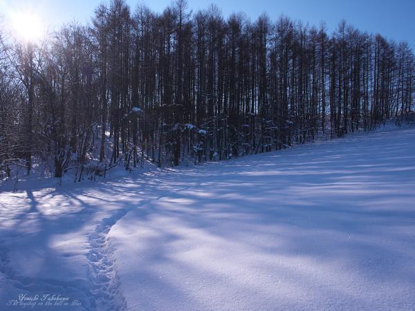 f:id:nijinotsumiki:20111220211329j:image