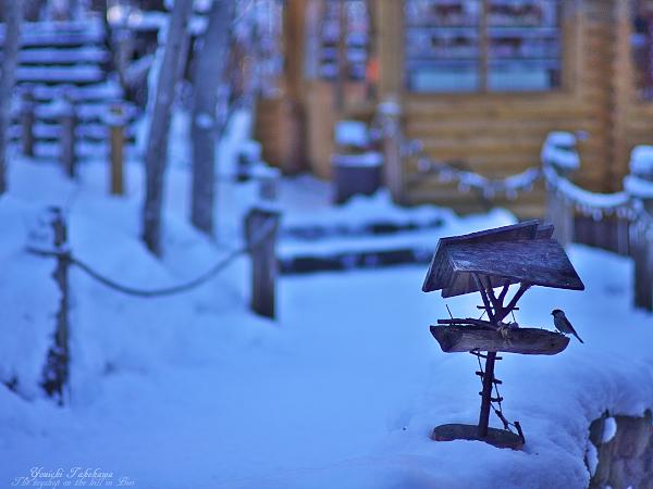 f:id:nijinotsumiki:20111220211439j:image