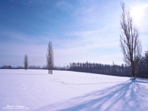f:id:nijinotsumiki:20120123175749j:image