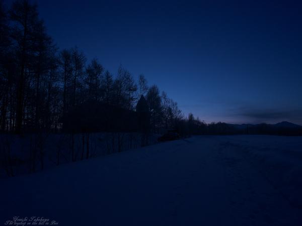 f:id:nijinotsumiki:20120201175715j:image