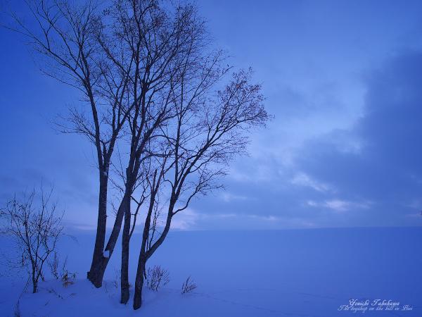 f:id:nijinotsumiki:20120203200144j:image