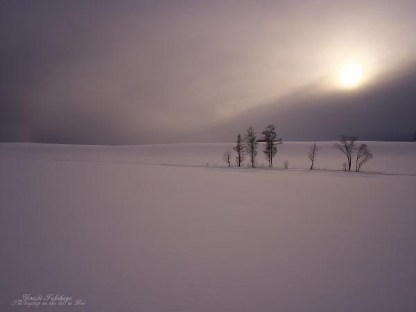 f:id:nijinotsumiki:20120204190043j:image