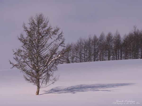 f:id:nijinotsumiki:20120226210146j:image