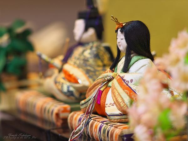 f:id:nijinotsumiki:20120303182514j:image