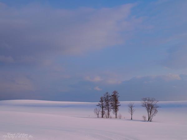 f:id:nijinotsumiki:20120324060931j:image