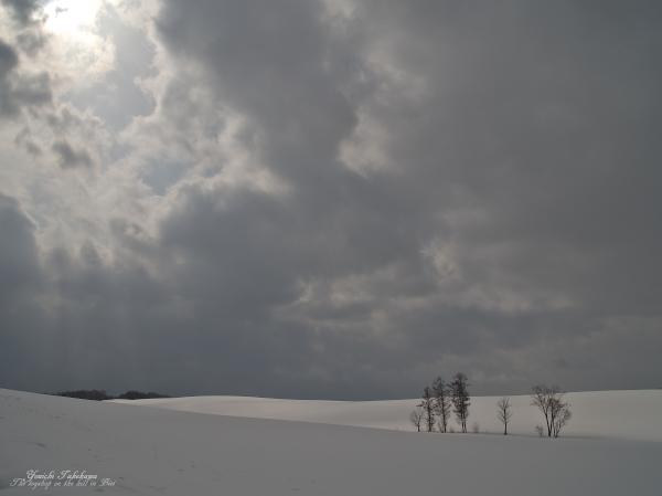 f:id:nijinotsumiki:20120324060932j:image