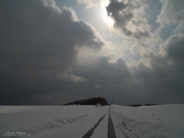 f:id:nijinotsumiki:20120324060933j:image
