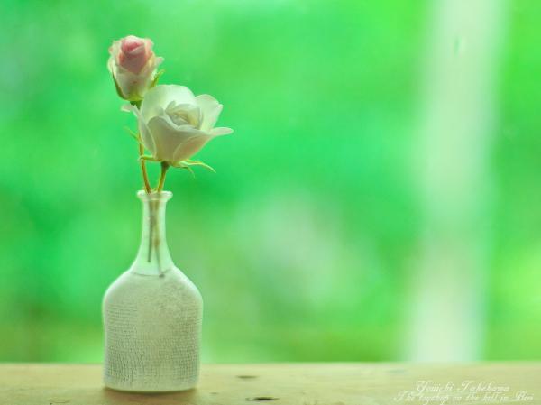 f:id:nijinotsumiki:20120703091909j:image
